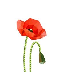 origami poppies vector image