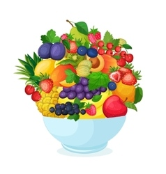 Bowl of cartoon fresh fruit and berries vector