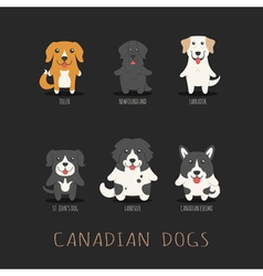 Set of canadian dogs  eps10 format vector