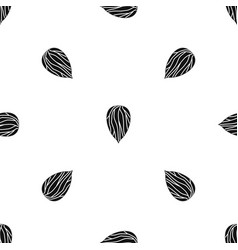 apricot seed pattern seamless black vector image vector image