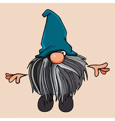 cartoon bearded gnome in the blue cap vector image vector image