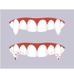 Vampire teeth with bloody fangs vector