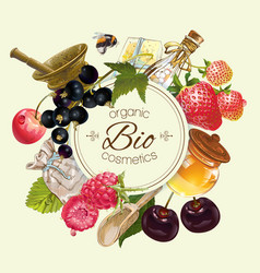 Fruit and berry banner vector