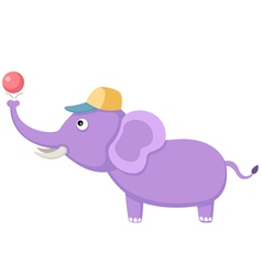 elephant with ball vector image vector image