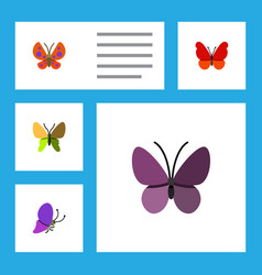 flat moth set of beauty fly moth violet wing and vector image vector image