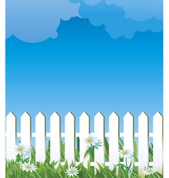 White fence and daise vector
