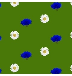 Seamless pattern with flowers chamomile vector