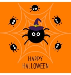 Cute cartoon fluffy spider set on the web witch vector