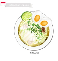 Soto ayam or indonesian rice noodle broth vector