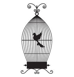 Birdcage vector
