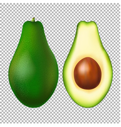 Avocado transparent background vector