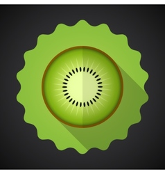 Kiwi Fruit Flat Icon with long shadow vector image