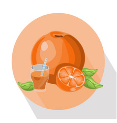 Orange smoothie summer drink vector