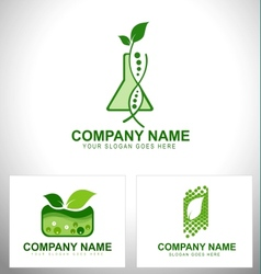 Genetically modified plants vector