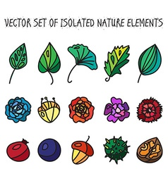 Vintage flowers fruits and leaves icons collection vector image