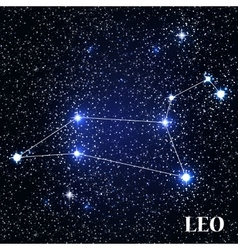 Symbol leo zodiac sign vector
