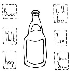 Craft beer bottle hand drawn vector