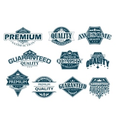 Labels set denoting premium quality vector