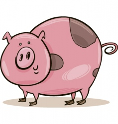 Cartoon spotted pig vector