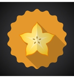 Star fruit flat icon with long shadow vector
