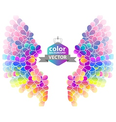 Bright color floral background with wings vector image vector image