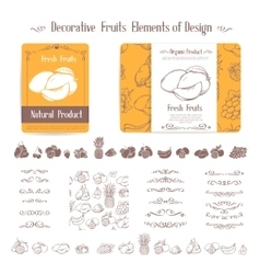 Set of decorative elements of fruits and swirl vector