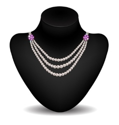 Necklace on a dummy vector image