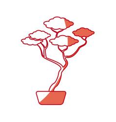 japanese bonsai tree natural hobby shadow vector image