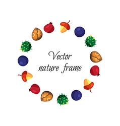 Vintage nuts berry fruits frame vector image vector image