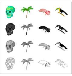 a human skull a palm tree ambystoma mexicanum a vector image vector image
