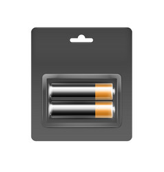 alkaline aa batteries in blister packed vector image