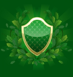 green shield vector image vector image