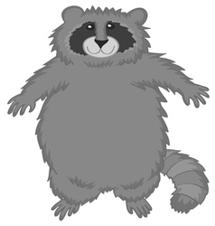 Raccoon cute cartoon vector