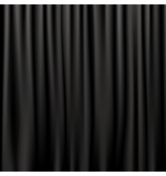 Silk curtains vector