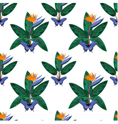 strelitzia and butterfly seamless pattern vector image vector image