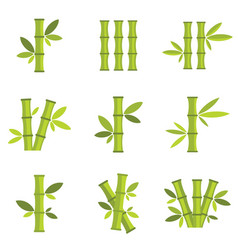 bamboo icons set isolated on white vector image vector image