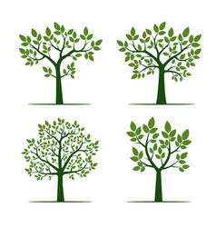 Set of green trees with leaf vector