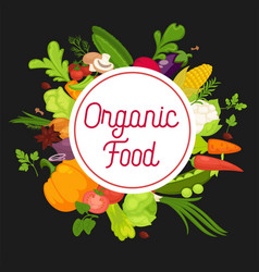 organic food advertisement banner with fresh vector image vector image
