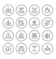 set round line icons of seed and seedling vector image