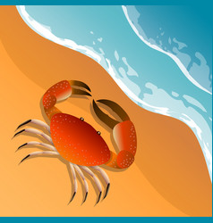 the on a beach theme summer vacation vector image