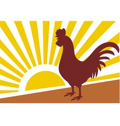 rooster and morning sun vector image