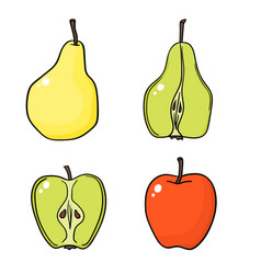 apples and pears on white background vector image vector image