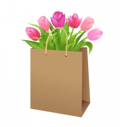 bag with tulips vector image vector image