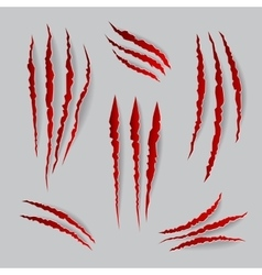 Cat claws marks set vector