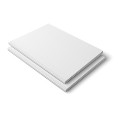 Pair of blank thick magazines vector