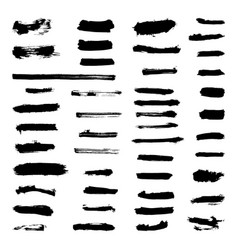 set of grunge paint strokes vector image