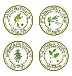 Set of essential oil labels star anise green vector