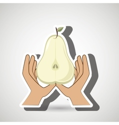 Hand food vegan fruit vector