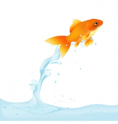 goldfish leaping out of water vector image