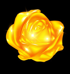 Abstract golden rose vector